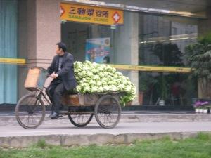 locomotion-chinois5