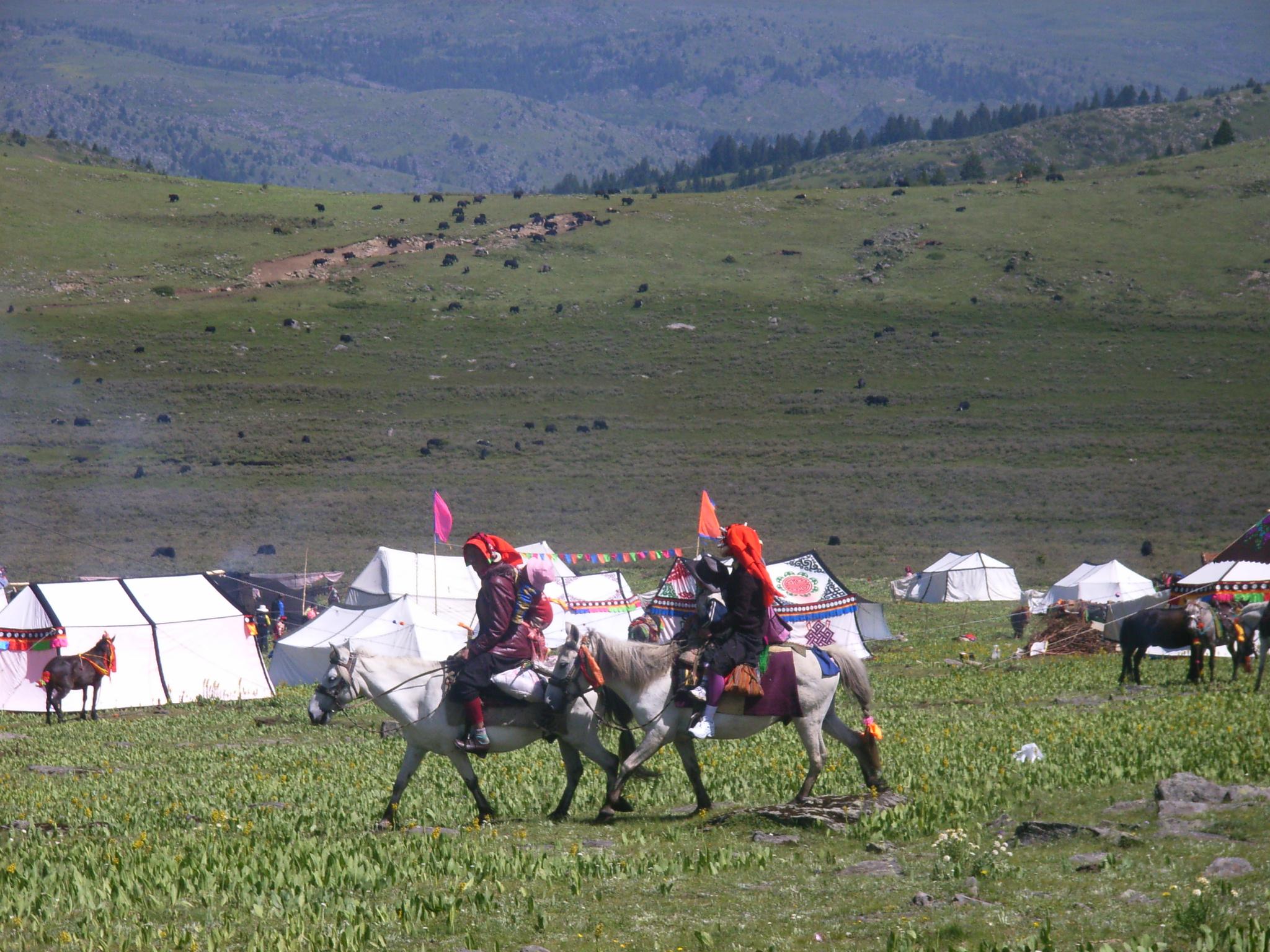 tibet-festival
