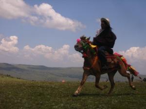 tibet-festival2