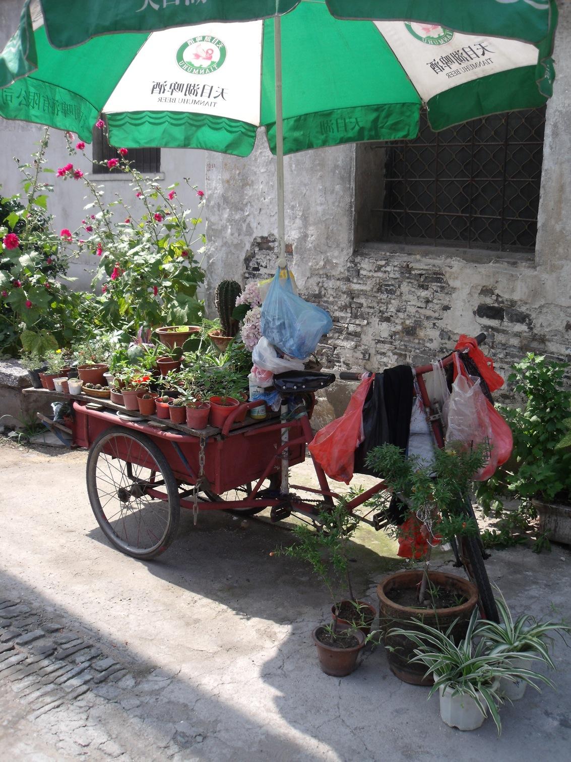 vendeur-fleurs